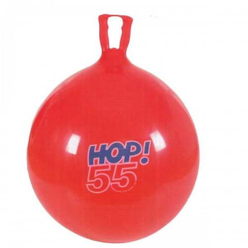 Mankštos kamuolys HOP Ø55cm